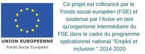 Logo FSE Metroloco